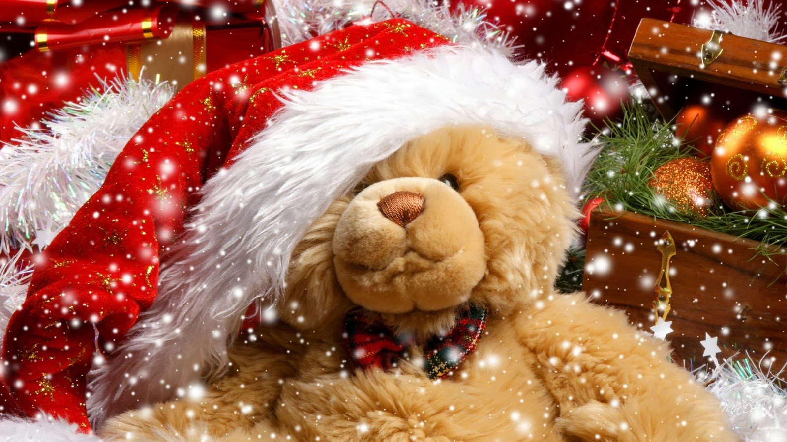 Cute Dog Wallpapers With Quotes صور دباديب حب حمراء وبيضاء احلي صور دبدوب سوبر كايرو