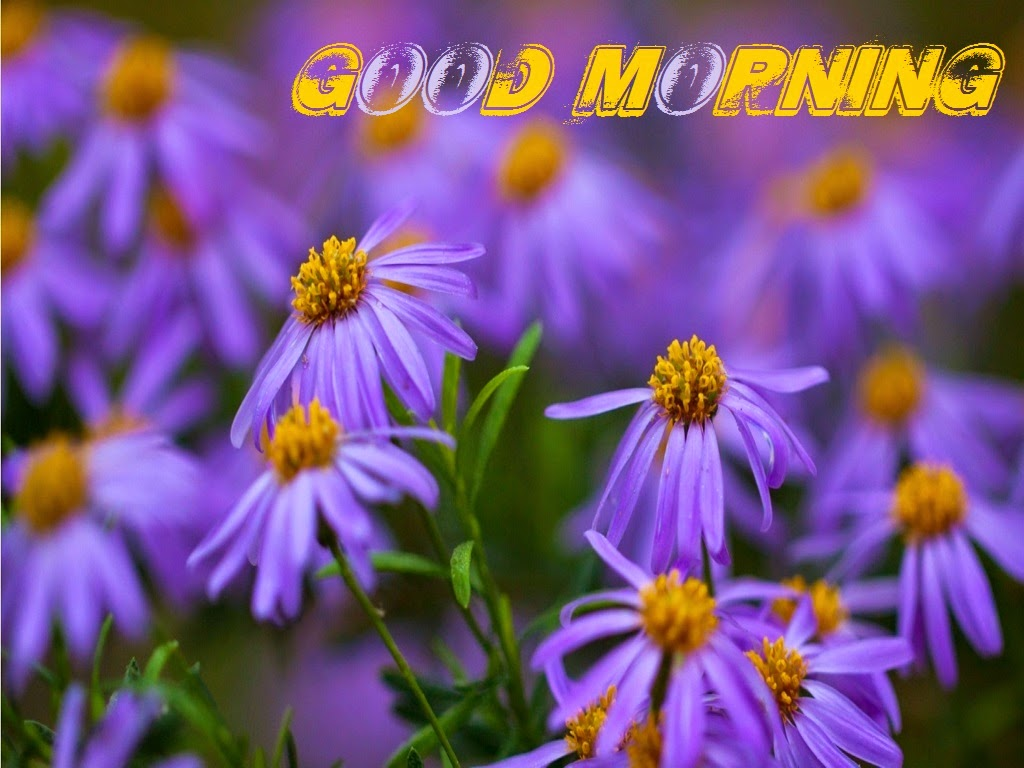 Wallpapers Of Christian Quotes صور صباح الخير Good Morning صور مكتوب عليها صباح الخير