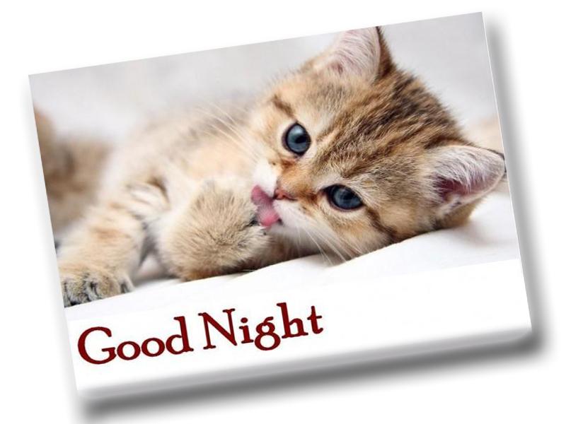 Good Evening Hd Wallpaper صور مساء الخير رمزيات مكتوب عليها Good Night سوبر كايرو