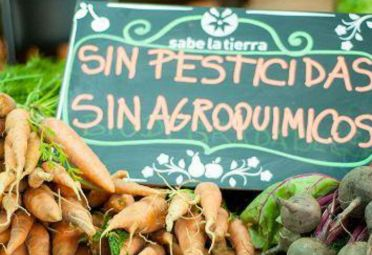 Mercados Sabe la Tierra, una opción sustentable.