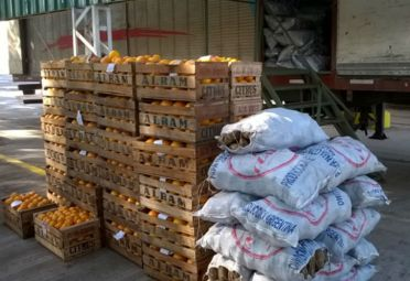 La mercadería fue detectada por el Senasa cerca de la ciudad de Bahía Blanca. FOTO: Senasa.