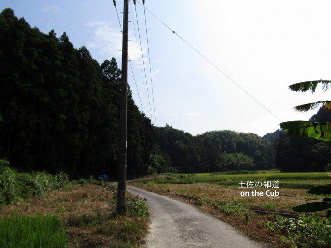 田舎の田園風景