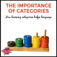 The Importance of Categories
