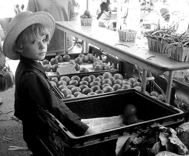 Amish Market