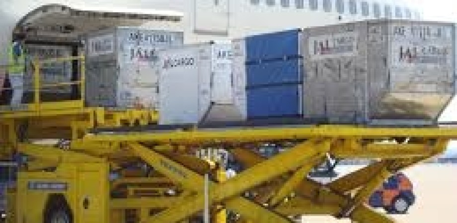 Aircraft Containers Size and Compatibility