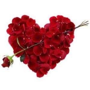 heart-of-flowers-roses