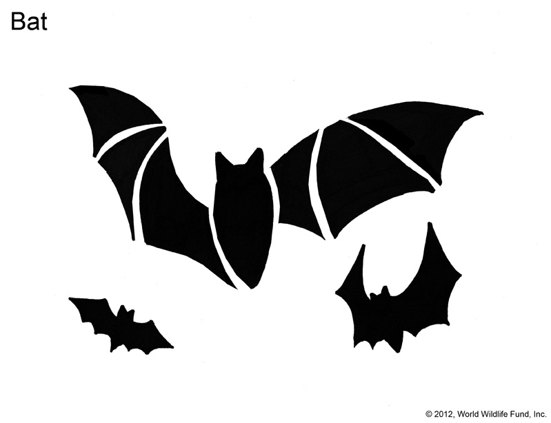Pumpkin Carving Patterns from WWF - Free Stencil Downloads World
