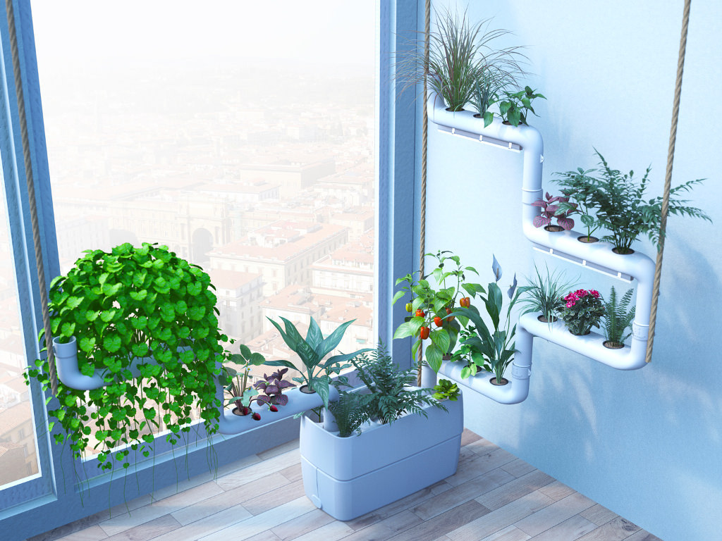 Indoor Plants For The Office Clean Indoor Air With Plants Air Purification At Home And Office