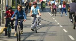 Imagen tomada de www.veoverde.com