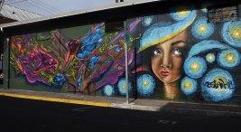 Arte urbano llena de vida y color el Edificio Saprissa de la UCR