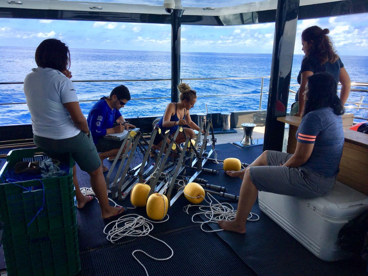 UCR aporta experiencia cientifica en estudio de corredor marino entre Isla del Coco e Islas Galapagos2
