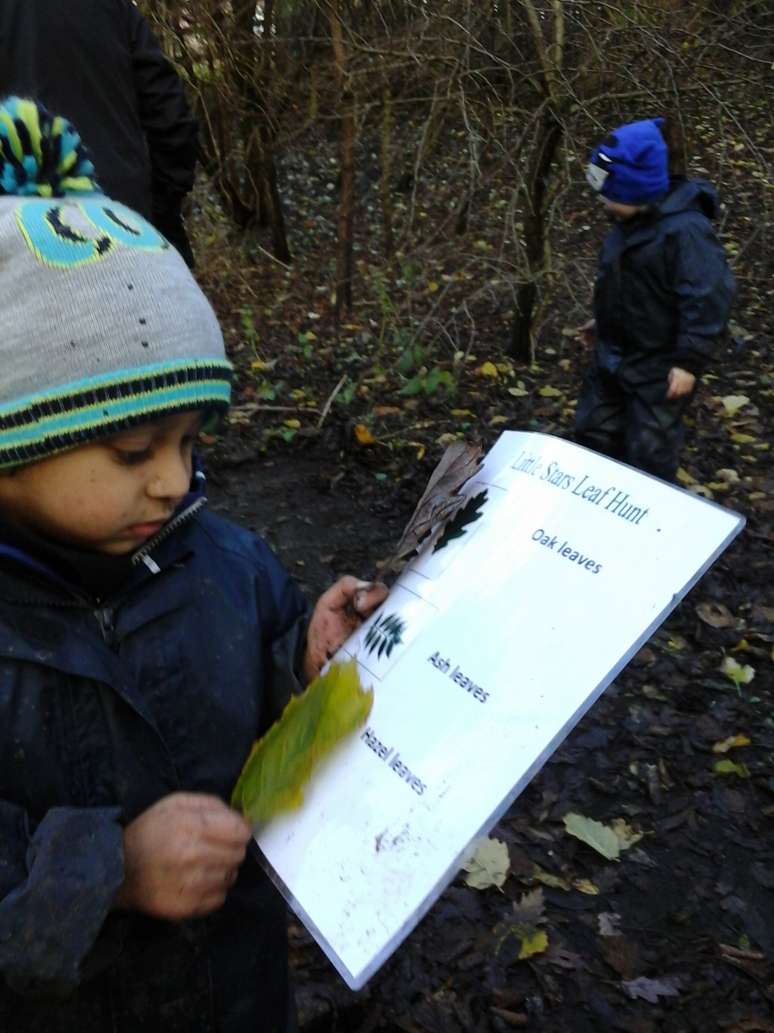 BCFC WCFC Forest School 27.11 (79)