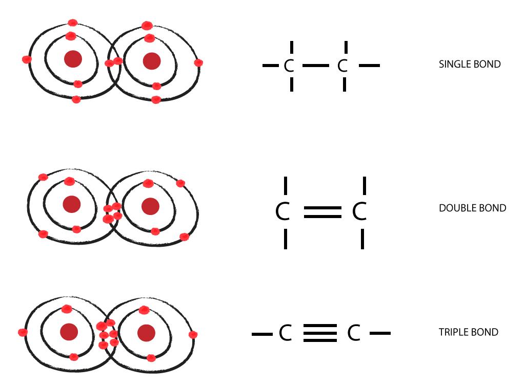 Carbon to Carbon - Single, Double  Triple Bonds - Surfguppy - carbon bonds