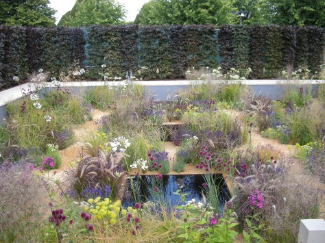 The One Show garden RHS Hampton Court Flower show