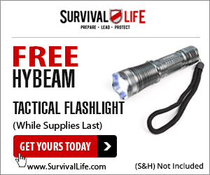 hybeamflashlight_300x250