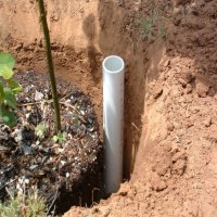 Deep Watering  PVC Pipe For Your Garden Plot | Town ...