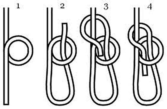 Awesome Bowline Knot Diagram Bowline Knot Diagram Auto Electrical Wiring Wiring Database Ilarigelartorg