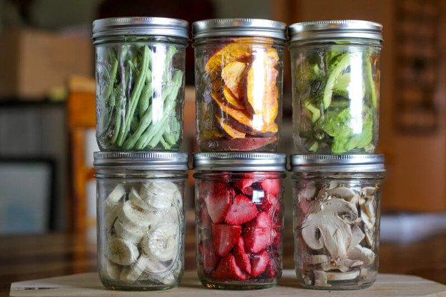 Food Preservation How To Freeze Dry Your Food In Your
