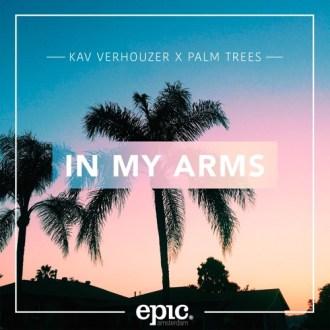 kav-verhouzer-palm-trees-in-my-arms