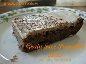 Grain Free Pumpkin Bars {Grain Free, Dairy Free, Egg Free, THM S, Paleo, GAPS}