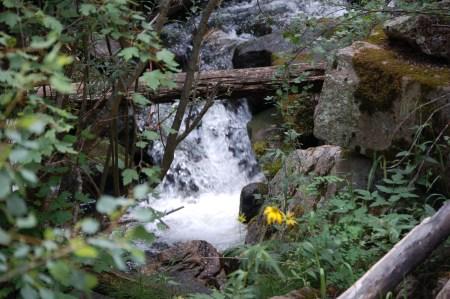 Hike on Cave Creek Trail 2006-July 086