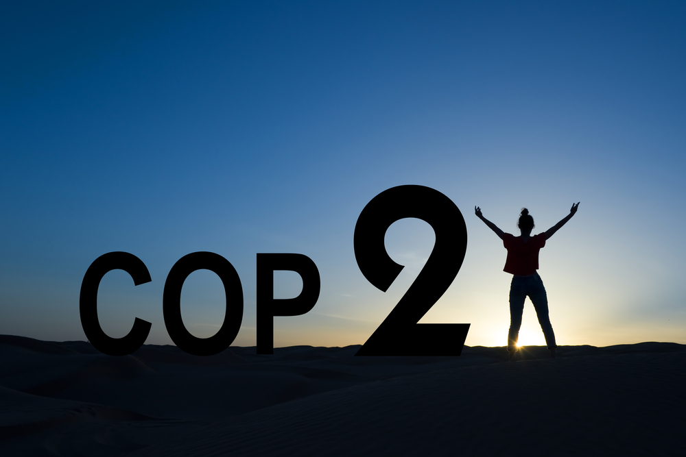 India's Tryst with COP21: Deal gets the green light but can we put if off?