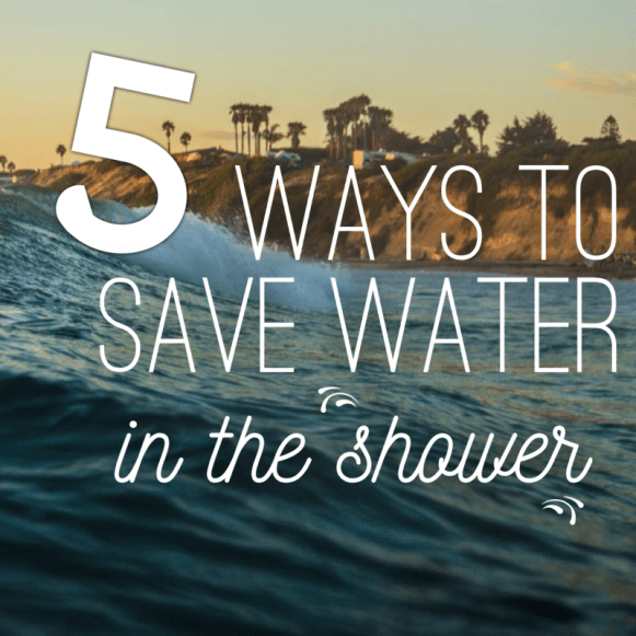 save water in the shower sustainable daisy sustainability tips drought blogger ecofriendly eco picture