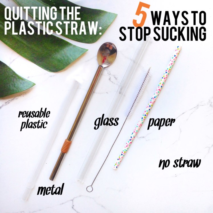 plastic straw stop stucking lonely whale reusable straws straw glass bpa free plastic product review sustainable sustainability blog blogger