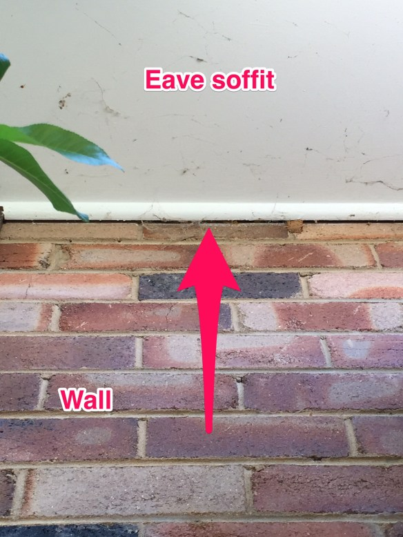 Gap between eave soffit and wall