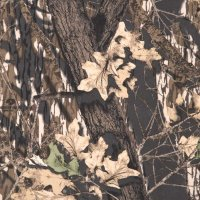 American Pacific, Inc. 4X8 1/4 Mossy Oak Camouflage Wall ...