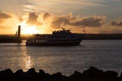 Coronado_Island_San_Diego-238