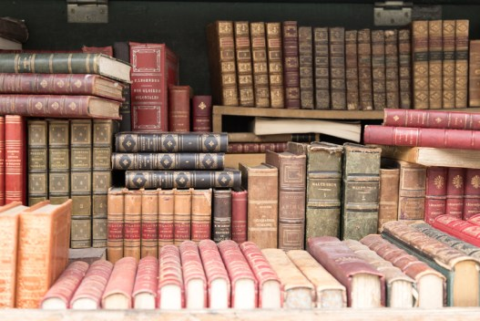 Old french books on dispay along the Seine