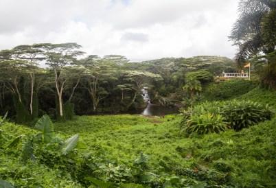 Kauai Hindu Monastery river lookout