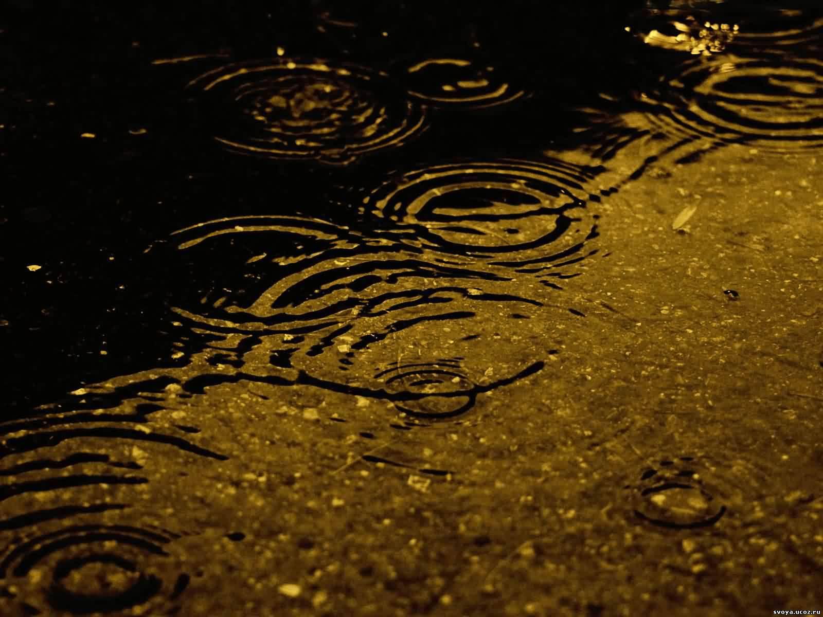 3d Animated Gif Wallpaper For Mobile Осенний дождь Обои для рабочего стола 1600х1200
