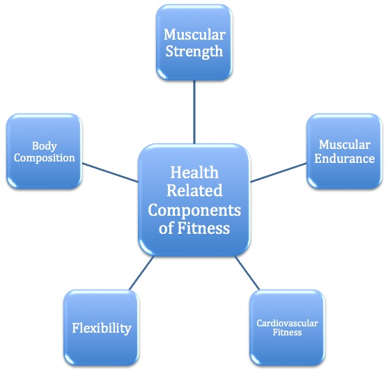 health related components of fitness sweatandsarcasm