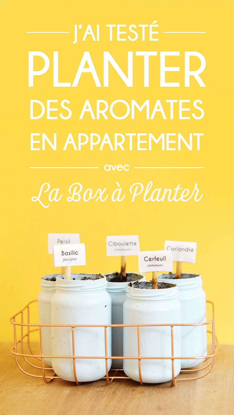 Comment Creer Un Jardin D'interieur La Box à Planter J Ai Testé Le Jardinage En Appartement Sweet