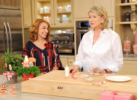 Martha Stewart Dani Fiori ice decorative Sweet Dani B Gnomi cookies