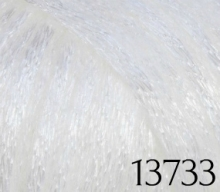13733