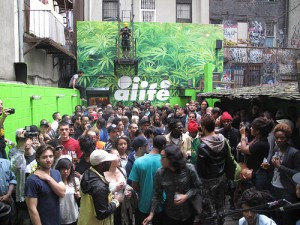 Alife with Indie Fashion