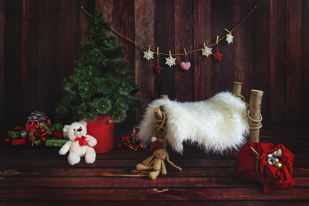 Fab Vinyl Christmas Themed Photography Backgrounds