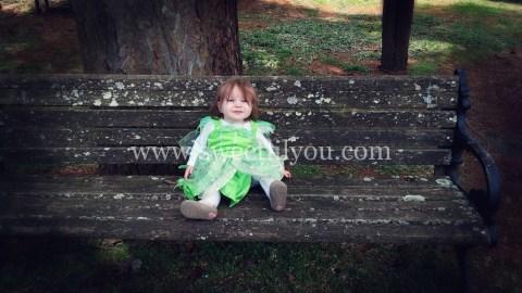 FAIRY GARDEN www.sweetlilyou.com