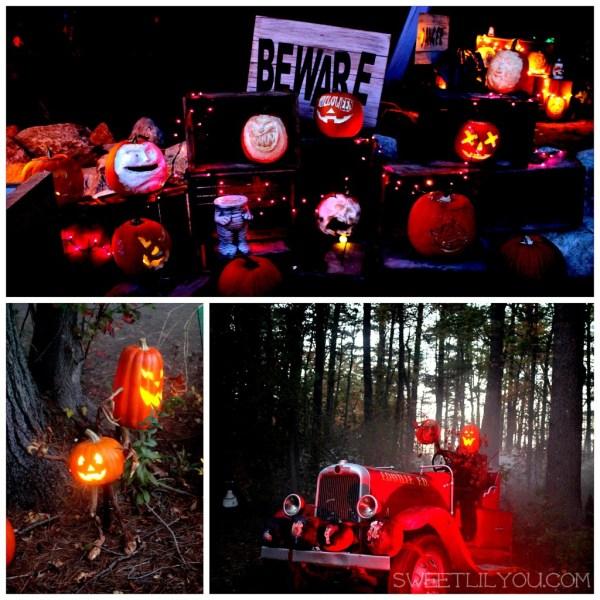 edaville pumpkins aglow