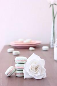 Macarons et rose en porcelaine froide