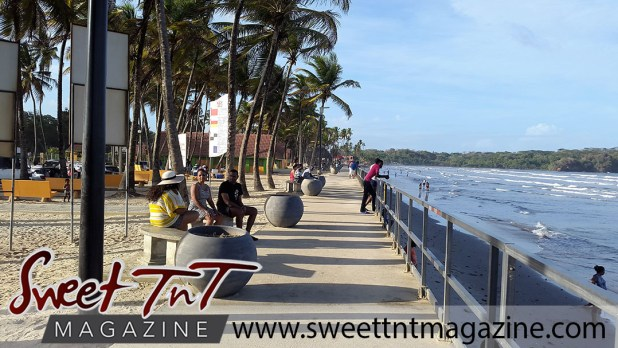 Manzanilla benches