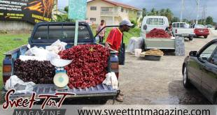 Sorrel vendor, joy of December, in sweet T&T for Sweet TnT Magazine, Culturama Publishing Company, for news in Trinidad, in Port of Spain, Trinidad and Tobago, with positive how to photography.