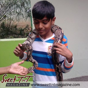 Snake petting! Aadam Ali at Emperor Valley Zoo.