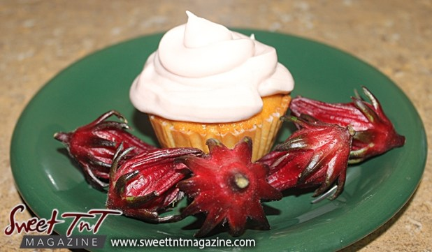 Sorrel or roselle red fruit pancake syrup in cake frosting for Christmas season or health benefits for cholesterol, blood pressure, bladder infections, constipation, maylase, use recipe for good taste and health benefits in Sweet T&T, Sweet TnT, Trinidad and Tobago, Trini, vacation, travel, breakfast