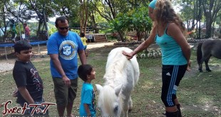 A moment at Healing with Horses, Pigeon Point, Nerissa Hosein article on Buccoo and Pigeon Point in sweet T&T for Sweet TnT Magazine, Culturama Publishing Company, for news in Trinidad, in Port of Spain, Trinidad and Tobago, with positive how to photography.