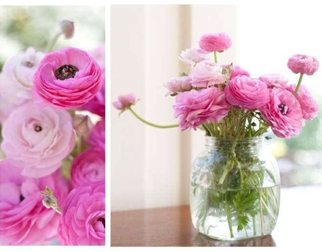 Wedding flower inspiration ranunculus