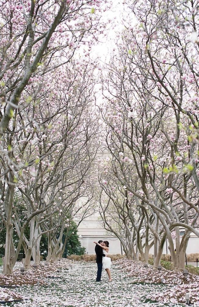 Wedding Flower Inspiration Cherry Blossom